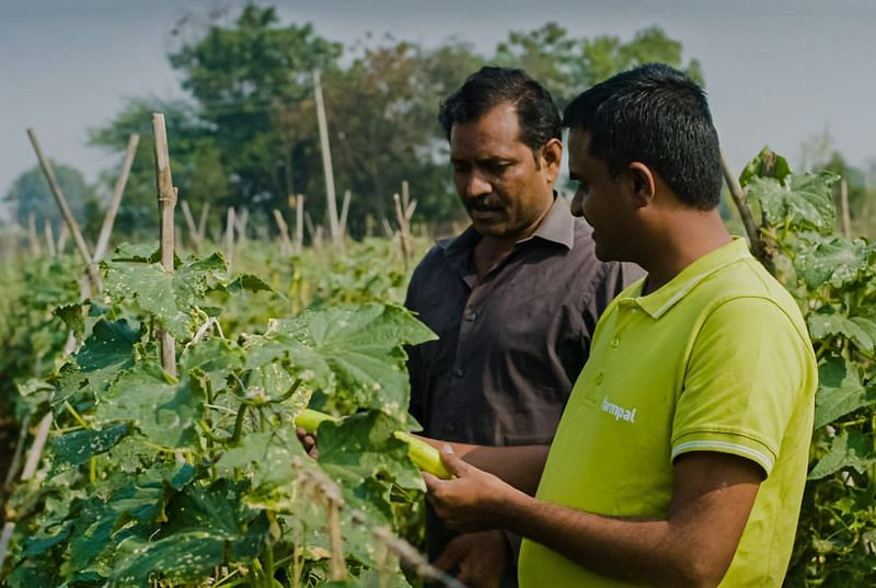 To manage the supply chain, Farmpal has created an ERP solution-backed mobile application that connects the company to both farmers and the end-consumers.